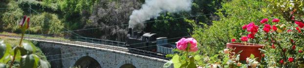 Trenino Lanusei
